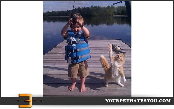 cat-fishing