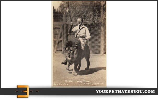 lion-rider-1930s