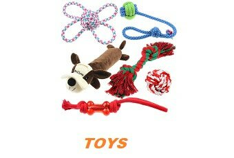 15 Recommended Dog Toys to Help Keep your Pet Happy and Active