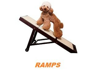 Dog Lover's Guide to Building or Buying Pet Ramps