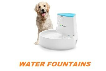 Pet Water Fountains Provide Clean and Healthy Drinking Water