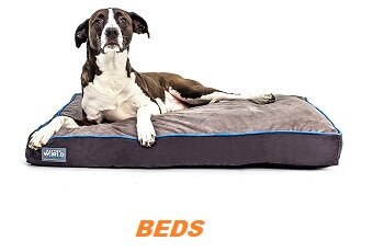 Modern Dog Beds for Every Pooch: 10 Great Suggestions