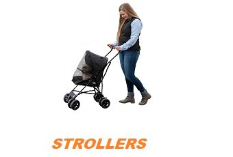 Dog Strollers Are Not So Absurd After All