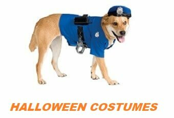 15 Hilarious Pet Halloween Costumes for Dogs